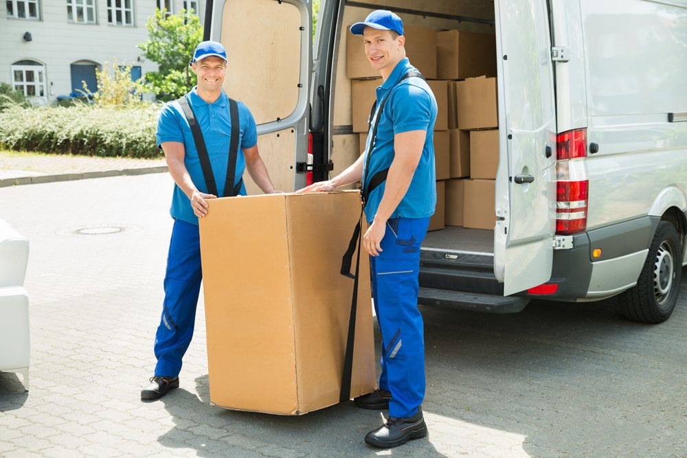 reliable parcel courier service
